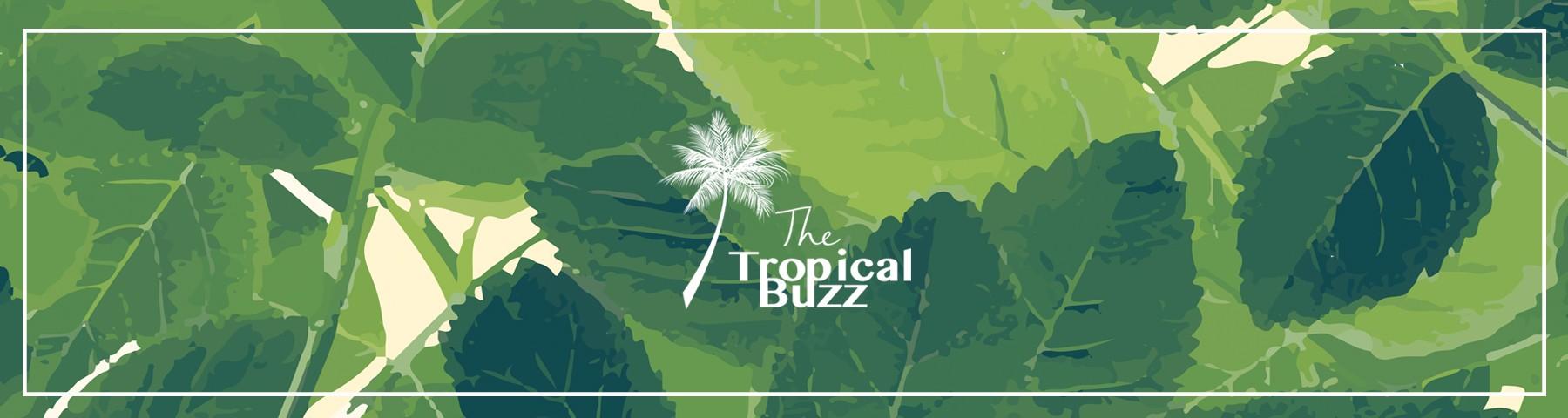 The tropical buzz
